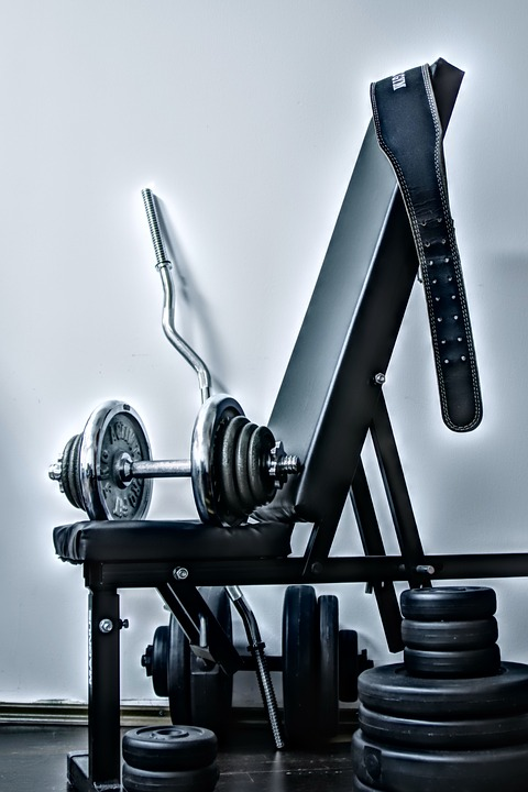 fitness si culturism informatii de calitate doar la webdape.com