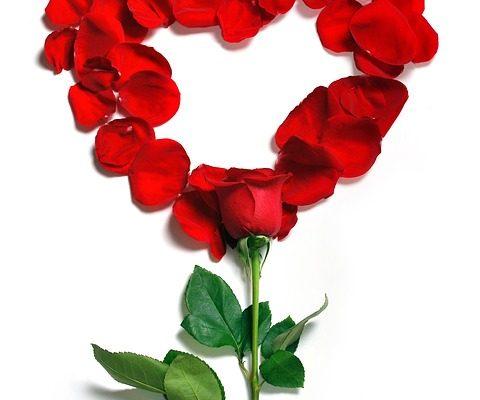 5 idei de cadou pentru femei de Sf. Valentin